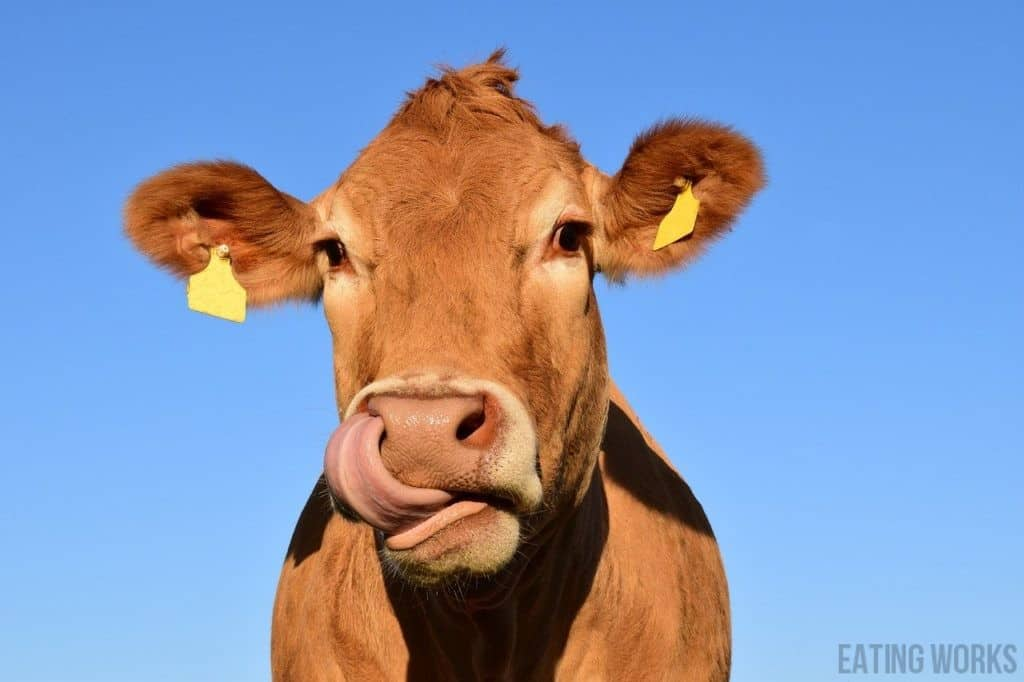 , Holy Cow! How Cow Dairy Makes Toddlers Constipated and Sick